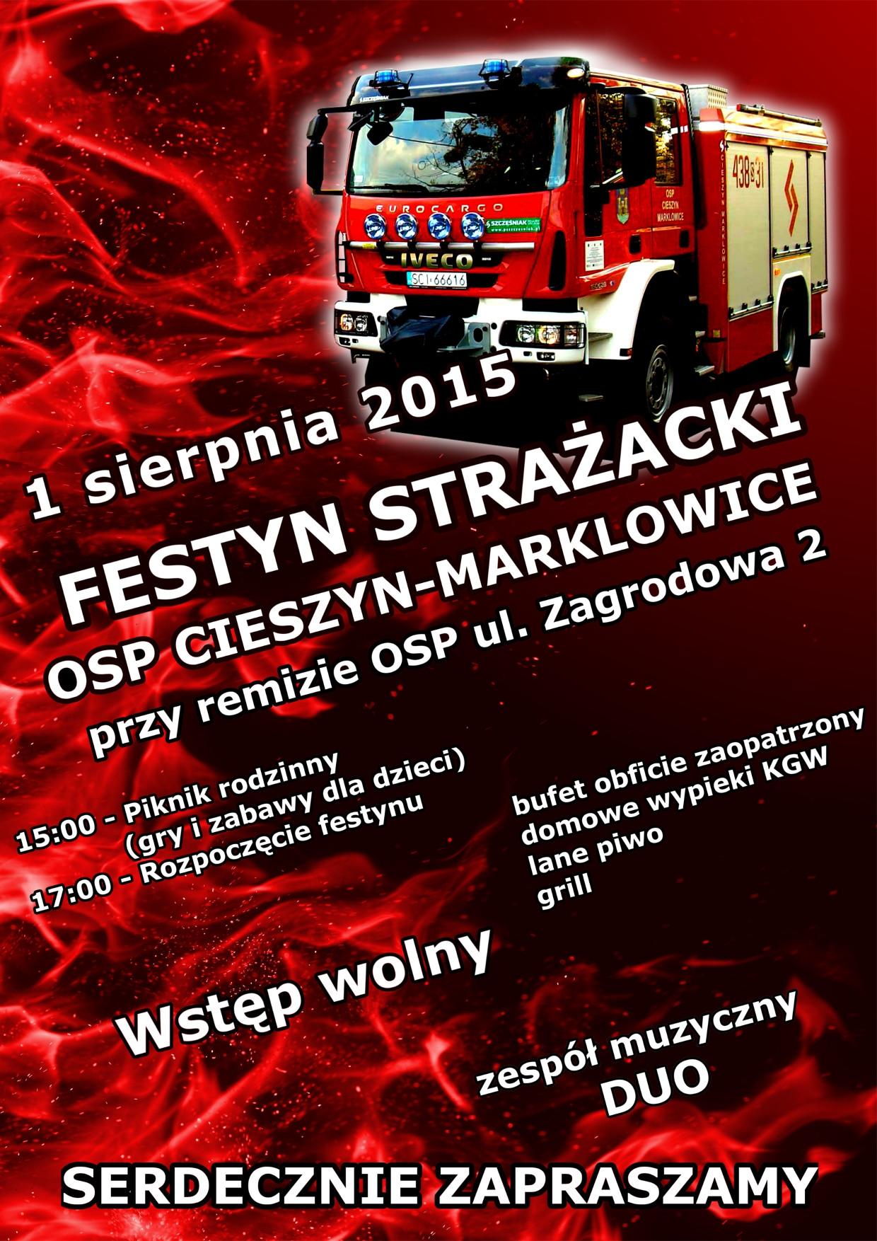 plakatfestyn2015mini